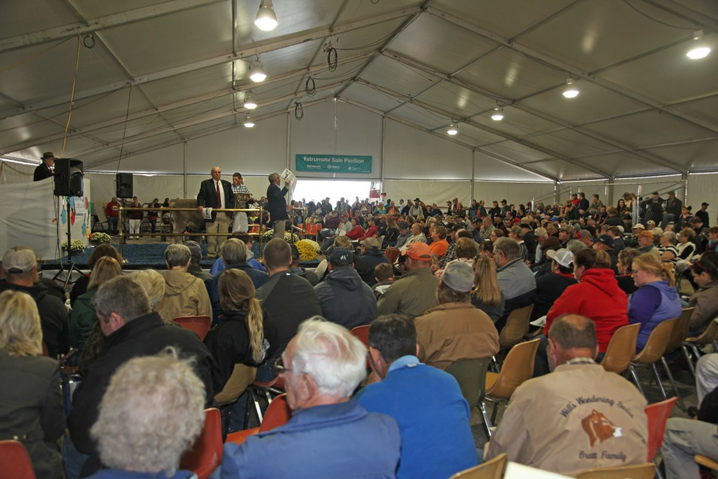 The 2015 Standing Room Only Crowd
