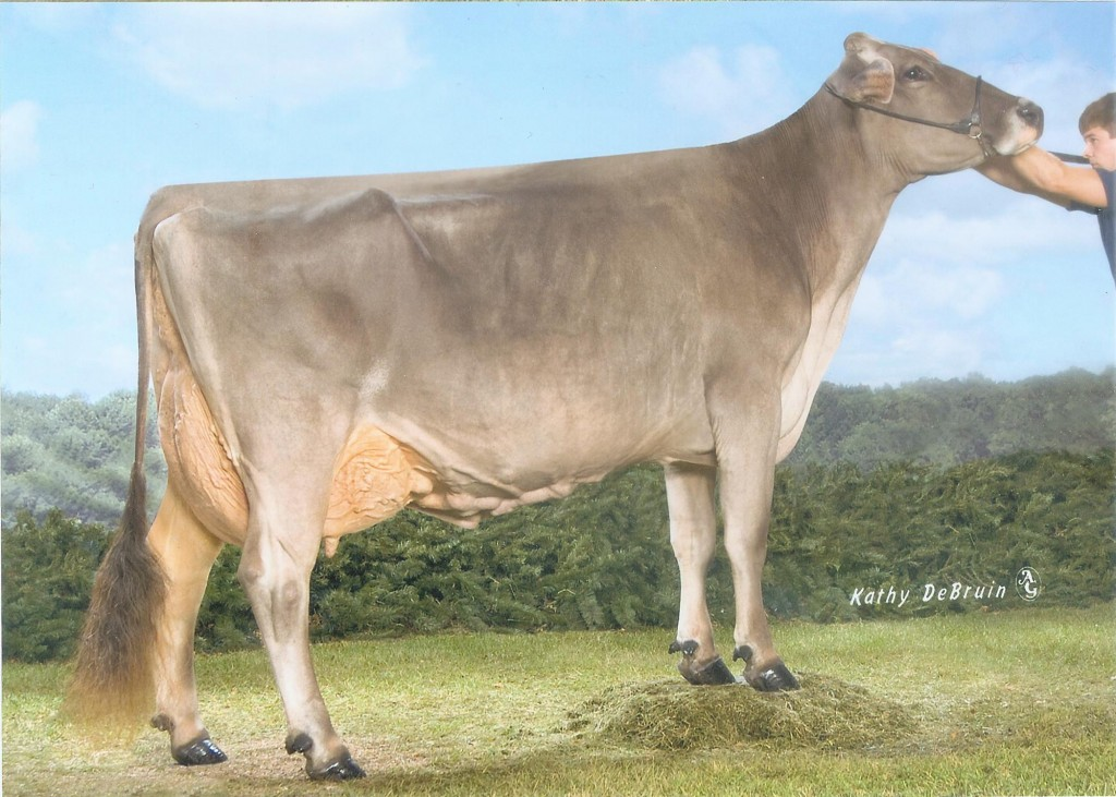 Old Mill E Snickerdoodle 5E94/97ms 8Times All American